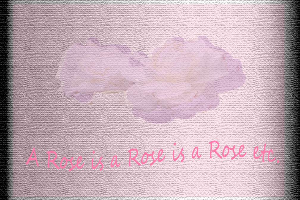 Graphic of a rose embossed on textured background
